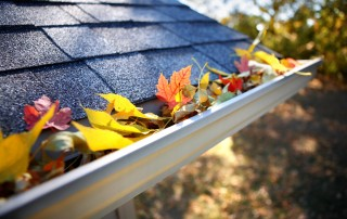 4 Fall Home Maintenance Tips from Solar Royal