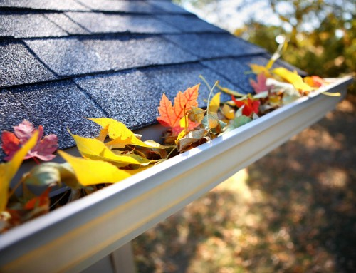 4 Fall Home Maintenance Tips